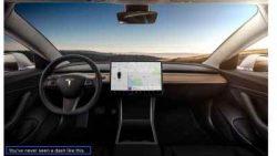 Tesla Model 3 & Elon Musk
